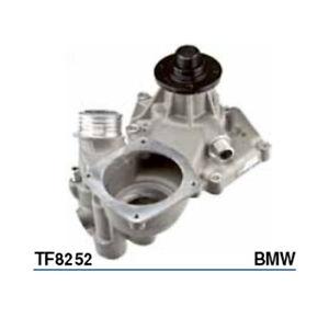 Tru-Flow Water Pump (Saleri Italy) TF8252