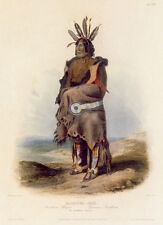Arrikkara Indian Warrior 22x30 Karl Bodmer Native American Indian Art