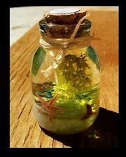 Tropical Florida Sand Beach Ocean Aquarium Sea Shells Seascapes In A Bottle #71