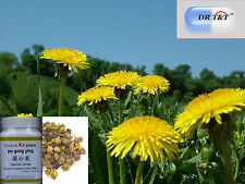 Dr T&t Cuscutae Semen TU SI Zi Dodder Seed 100g Concentrate Powder 1 7