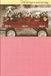 American Greetings Get Well Card: Bulldog Puppies...We All Hope It Won't Be Long