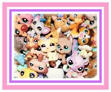 Authentic Littlest Pet Shop LPS Mixed Lot of 8 Pets Dog or Cat Mixed Species Toy