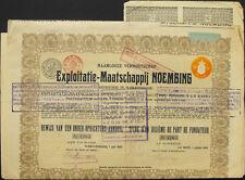 Niederlande Eyploitatie-Maatschappij Noembing Aandeel 1910 Netherlands Kolonie
