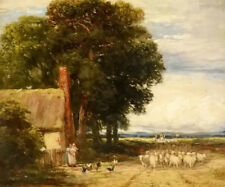 Dream-art oil painting david cox - landscape with a shepherd and sheep canvas