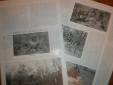 Article Hunting in Senegambia Africa 1909