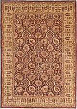 6X9 Hand-Knotted Oushak Carpet Traditional Red Fine Wool Area Rug D15823