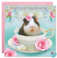 Girls Birthday Cards Niece Sister Friend Daughter Granddaughter Guinea Pig Lover