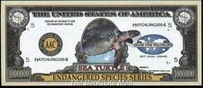 Million Note - Fantasy Money - Beautiful -Endangered Species Series - SEA TURTLE
