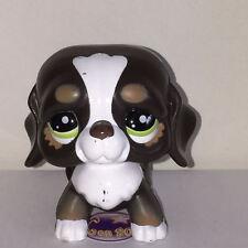 Littlest PetShop CHIEN SAINT BERNARD NOIR ET MARRON MARCHEU2121 O42 DOG Pet Shop