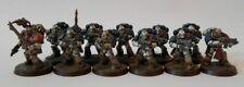 Horus Heresy mundo caprichosos Tactical Squad con conversión de farmacia Pro Pintado