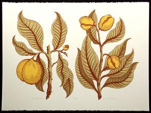 """Jules Roch """"Nutmeg Tree"""" Hand Signed Ltd ed Fine Art Serigraph, botanical, OBO"""