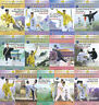 Chinese Kungfu Martial Art Series of Wudang Martial Art by Yue Wu 13DVDs