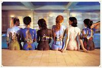 "Pink Floyd Back Catalogue Maxi Poster 24"" x 36"""