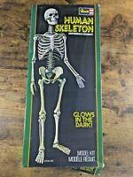 Revell Human Skeleton Glow In The Dark Model Kit