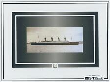 RMS TITANIC tiny relic WOOD SHAVINGS specks 1912 White Star Line historic piece