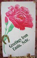 ANTIQUE POST CARD GREETINGS FROM EUSTIS NEBR NEBRASKA EVA RANDALL EARL CARNATION