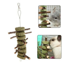 Pet Hamster Rabbit Teeth Grinding Toys Tree Branch Grass Ball Hanging Cage S3