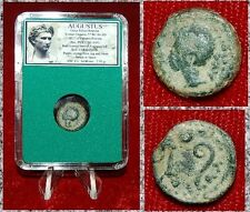 Roman Empire Coin AUGUSTUS Colonia Patricia,Spain Emperor Augustus On Obverse