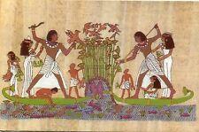 Arte antiguo tarjeta postal-The Scribe Menna fishing and hunting Birds