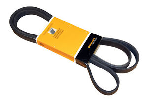 Serpentine Belt CRP PK060935