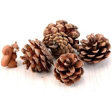 New Christmas Tree Hanging Balls Pine Cones Pinecone Xmas Holiday Party Decor