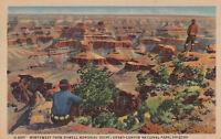 Linen Postcard A686 1952 Northwest Powell Memorial Point Grand Canyon Arizona
