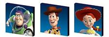 TOY STORY - BUZZ, WOODY, JESSIE CANVAS ART BLOCKS/ WALL ART PLAQUES/PICTURES