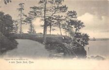 Savin Rock, West Haven, Connecticut 1905 Vintage Rotograph Co. Postcard