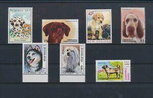LO13742 World pets animals dogs fine lot MNH