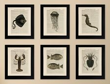 SET OF 6 ART PRINTS ON OLD ANTIQUE BOOK PAGE, Lobster, Octopus, Quirky Wall Art