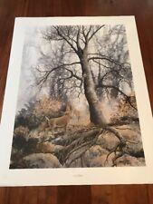 Deer Watcher by Jean Veitor