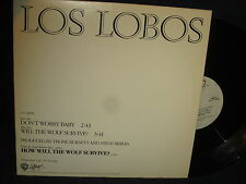 """Los Lobos """"Will The Wolf Survive?/Don't Worry Baby"""" 12"""" Single PROMO"""