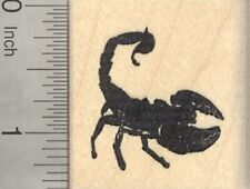 Scorpion Rubber Stamp, Predatory Arthropod D24509 Wm