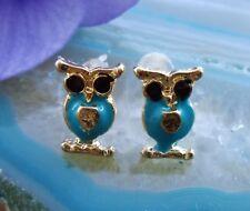 Ohrstecker Eule türkis blau emailliert gold farbig vergoldet Ohrring