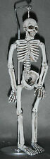 Doll miniature handcrafted Medical skeleton on stand 1/12th scale