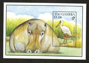 Gambia Stamp - African Spoonbill, bird with Hippopatamus - NH