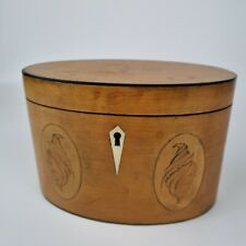 More details for fine antique 19th century oval satinwood tea caddy with shell inlay