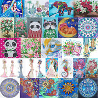 Embroidery Cross Stitch 5D Special Shaped Mosaic Dress Lady Diamond Painting DIY