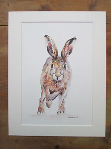 """Watercolour hare, Phoebe , print of original painting, in 14"""" x 11"""" Mount"""