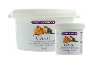 Companion CA-37 Optimise general health in dogs puppies cats + added probiotic