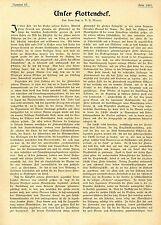 Korv.- Kap. a. D. H. Mayer Unser Flottenchef  Prinz Heinrich von Preußen1906