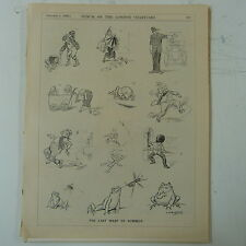 """Punch Cartoon 7x10 """" 1930 La dernière WASP de l'été grenouille"""