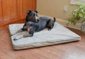 Armarkat LARGE Memory Foam Dog Pet Bed Mat Sage Green Gray