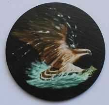 Osprey - Coaster - Welsh Slate