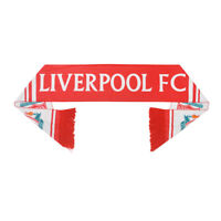 Liverpool Football club Soccer Scarf Neckerchief Fan Souvenir gift New