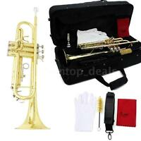 Bb Beginner Trumpet in Gold + Care Kit + Case + Mouthpiece + Gloves USA STOCK