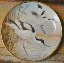 """Avocet"" Water Birds of the World Franklin Porcelain, Basil Ede Free Shipping"