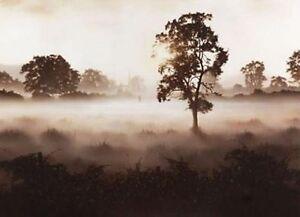 JOHN WATERHOUSE 'MORNING MIST (CHURCH COUPLE)'  LTD EDT.GICLEE PRINT 60% OFF