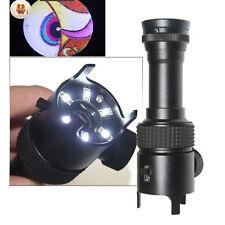 50X Pocket Magnifier Microscope 6 LED W/Scale Adjustable Jewelry Appraisal Print