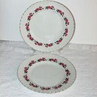 RIDGWAY ROMANCE WHITE MIST DINNER PLATES 2 PINK ROSES VINTAGE PLATE IRONSTONE